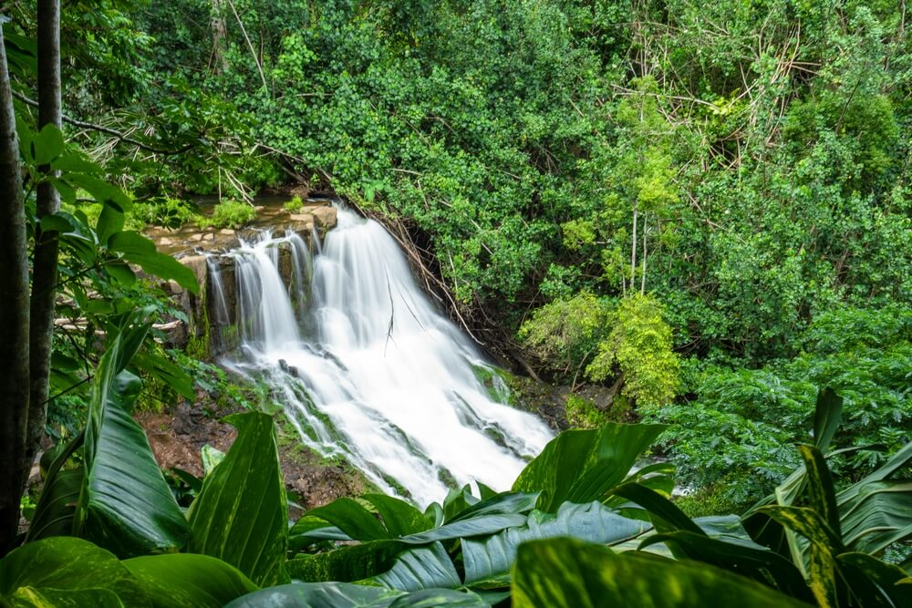 8 Things To Do In Kauai This Fall